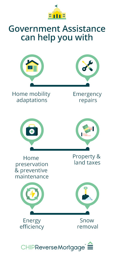 Infographic of how government assistance can help you with