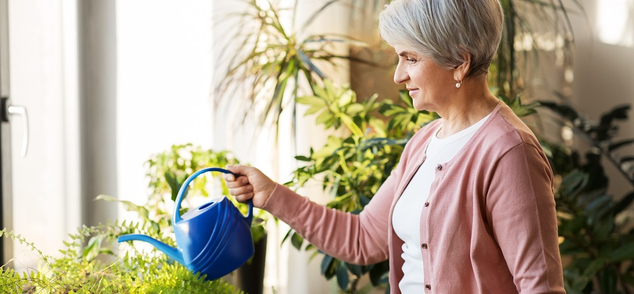 A woman watering plants