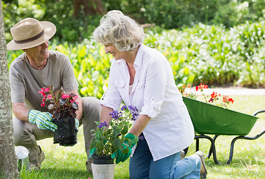 A retired couple shares a laugh as they plant flowers in their garden